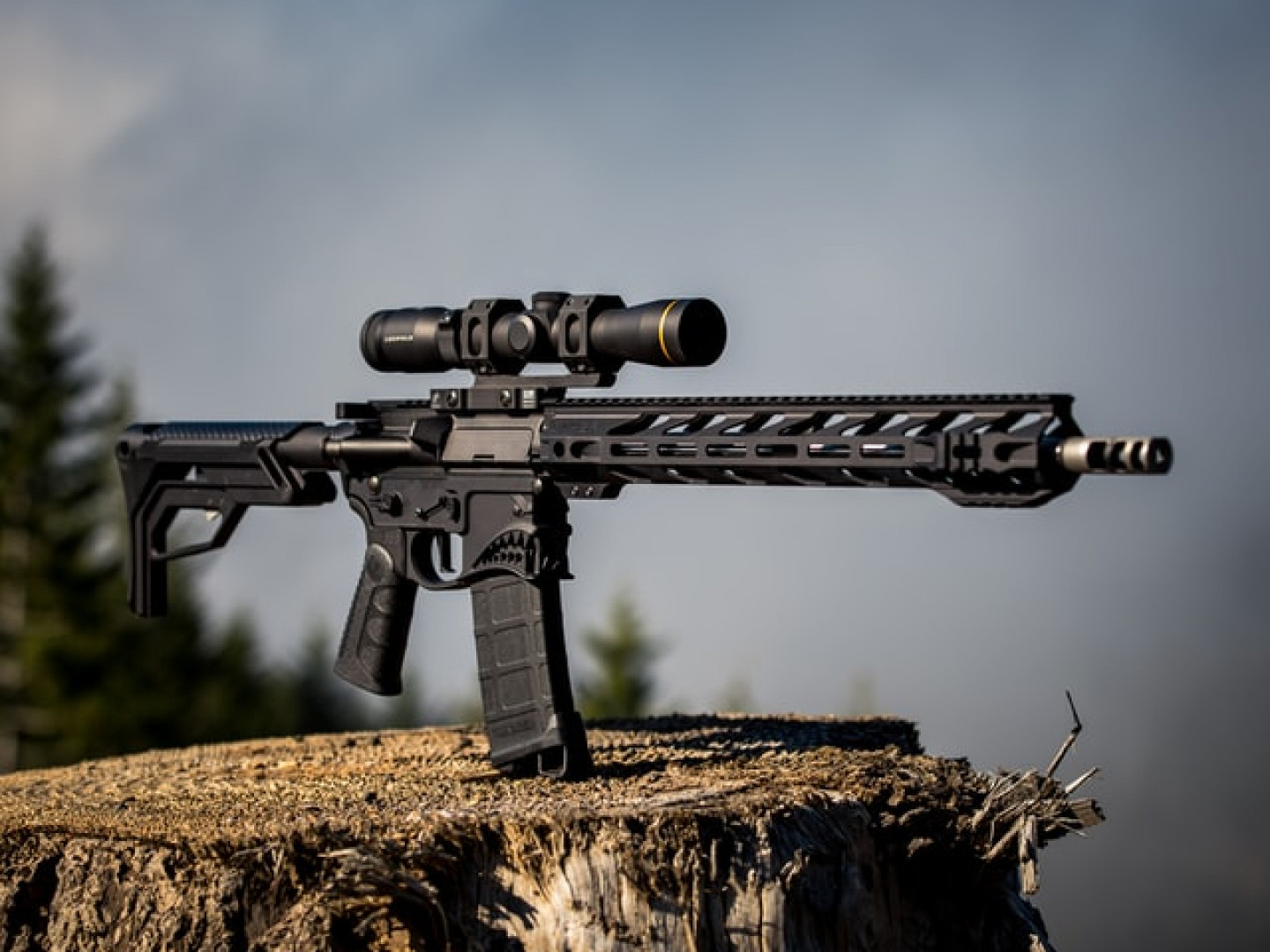 Check out our gun optics and accessories